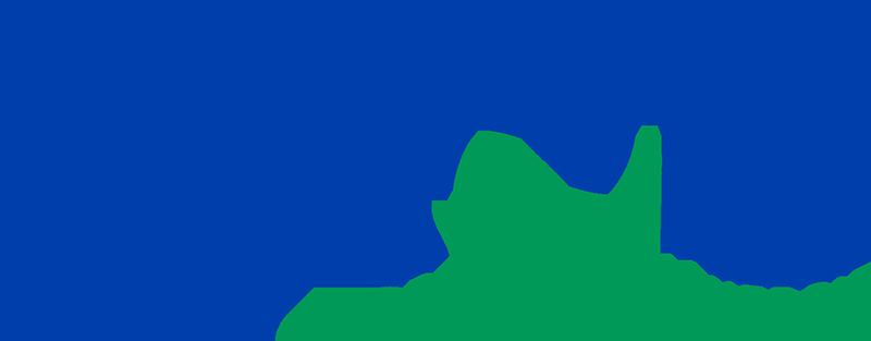 Logo couleur enoe avec baseline