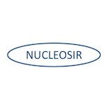 Logo nucleosir