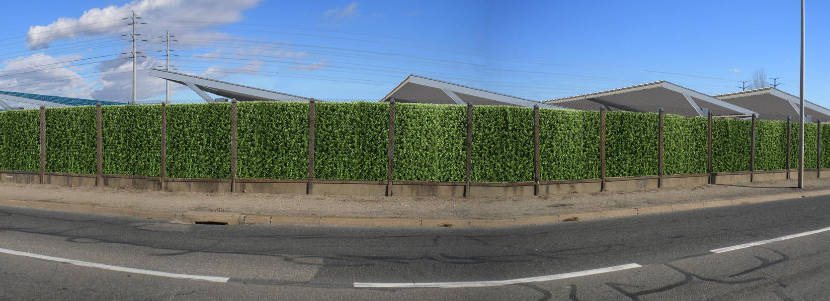 Panorama 7 photomontage haie