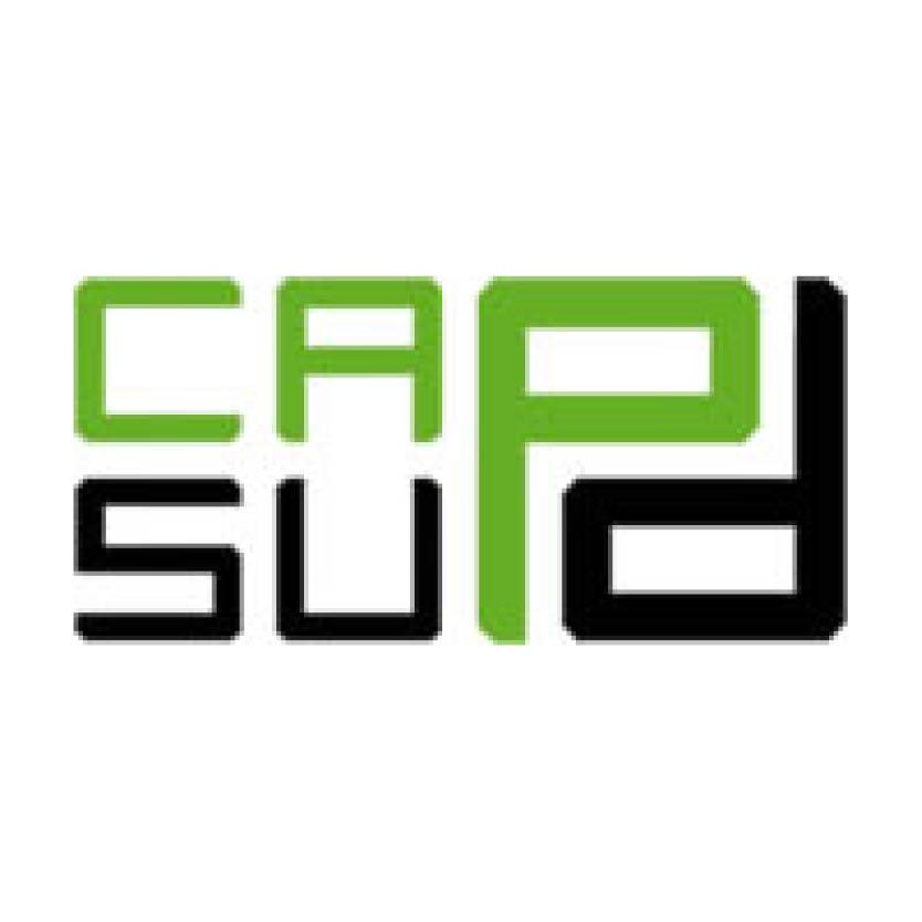 Logo capsud petit