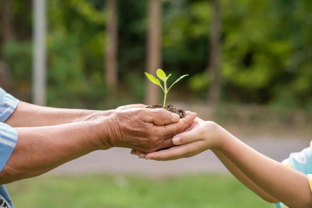 benefices environnement